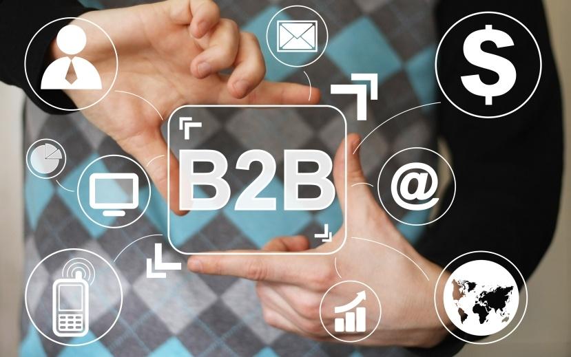 b2b channel sales model